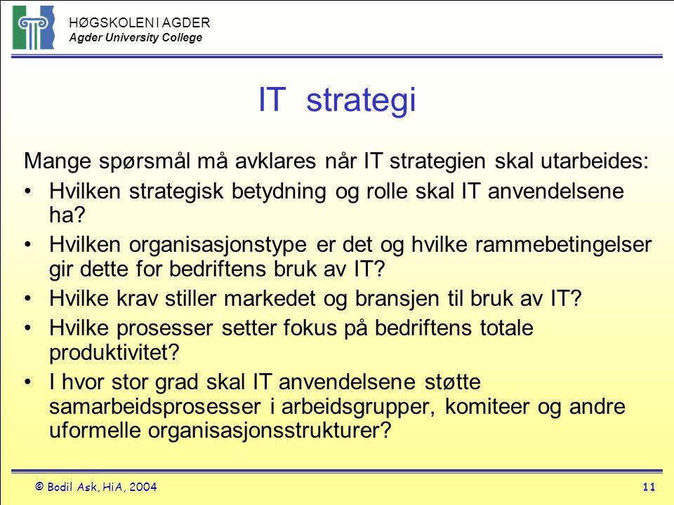 IT strategi Mange spørsmål må avklares når IT strategien skal utarbeides: Hvilken strategisk betydning og rolle skal IT anvendelsene ha