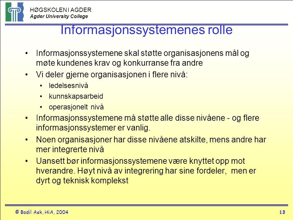 Informasjonssystemenes rolle