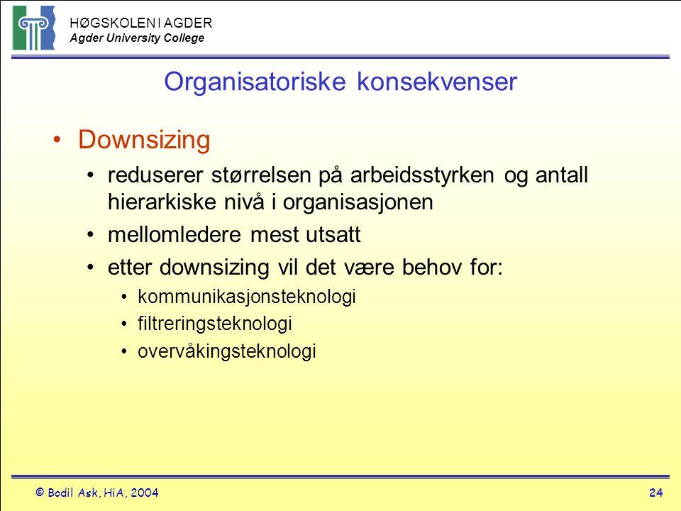 Organisatoriske konsekvenser