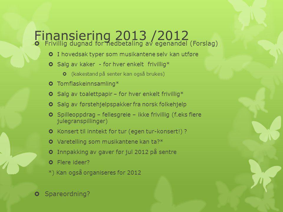 Finansiering 2013 /2012 Frivillig dugnad for nedbetaling av egenandel (Forslag) I hovedsak typer som musikantene selv kan utføre.
