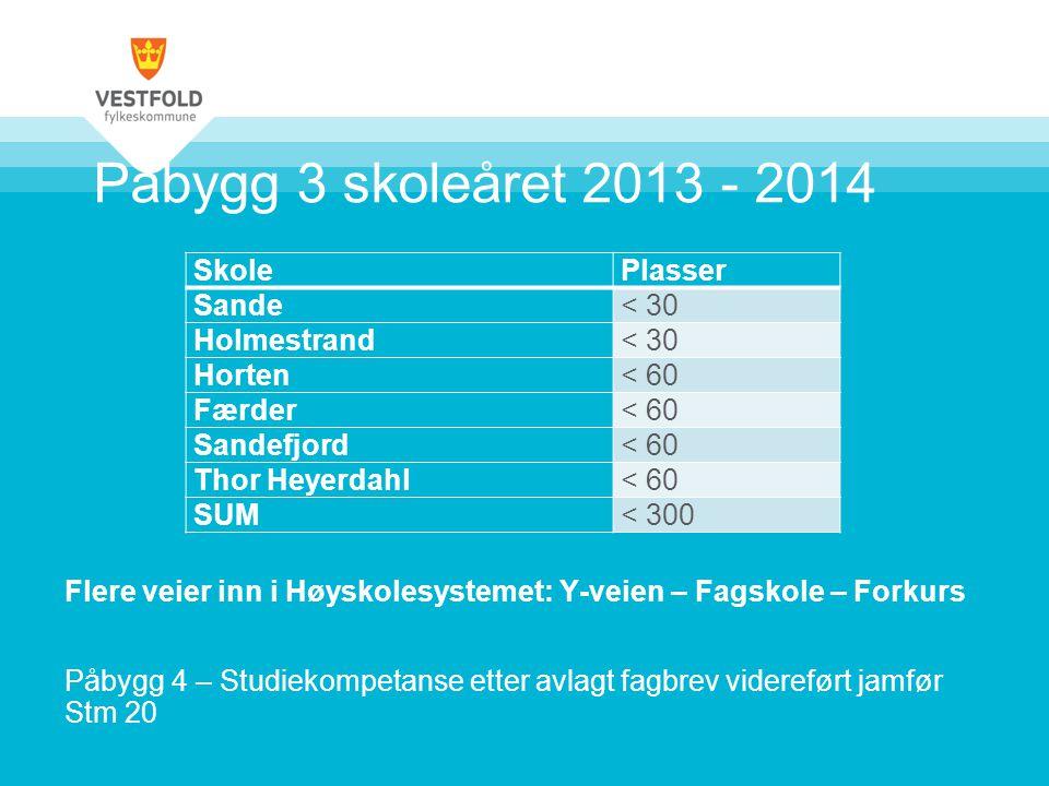 Påbygg 3 skoleåret 2013 - 2014 Flere veier inn i Høyskolesystemet: Y-veien – Fagskole – Forkurs.