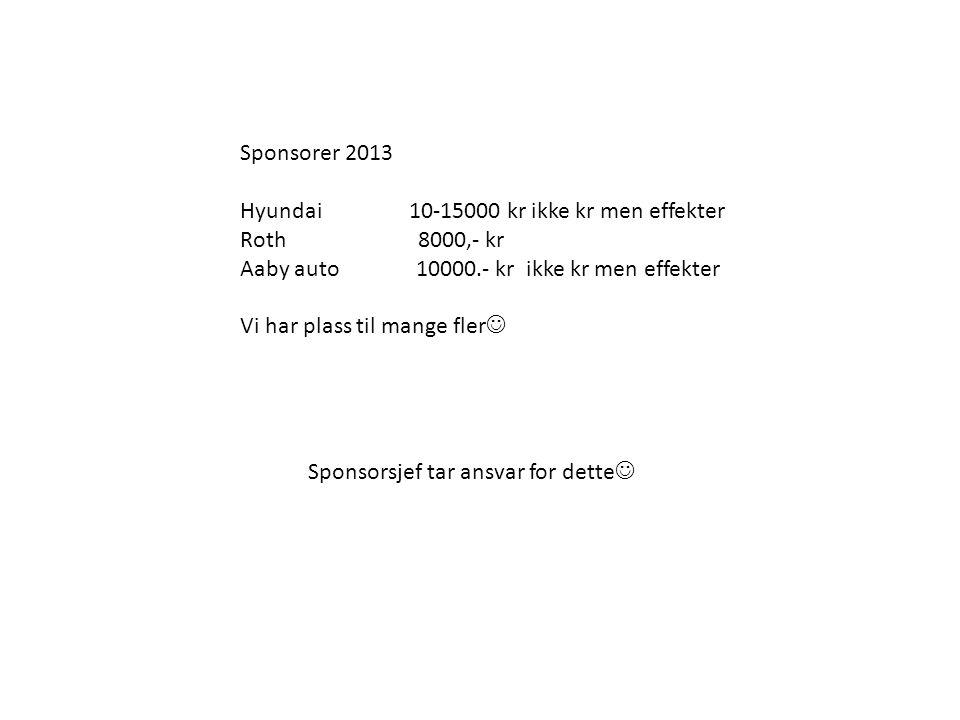 Sponsorer 2013 Hyundai 10-15000 kr ikke kr men effekter. Roth 8000,- kr.