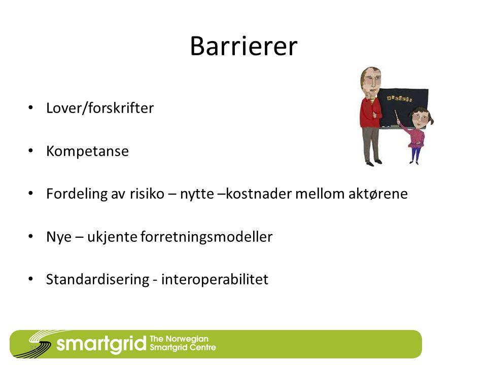 Barrierer Lover/forskrifter Kompetanse