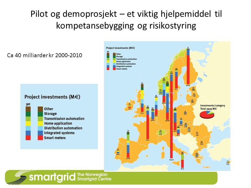 Pilot og demoprosjekt – et viktig hjelpemiddel til kompetansebygging og risikostyring