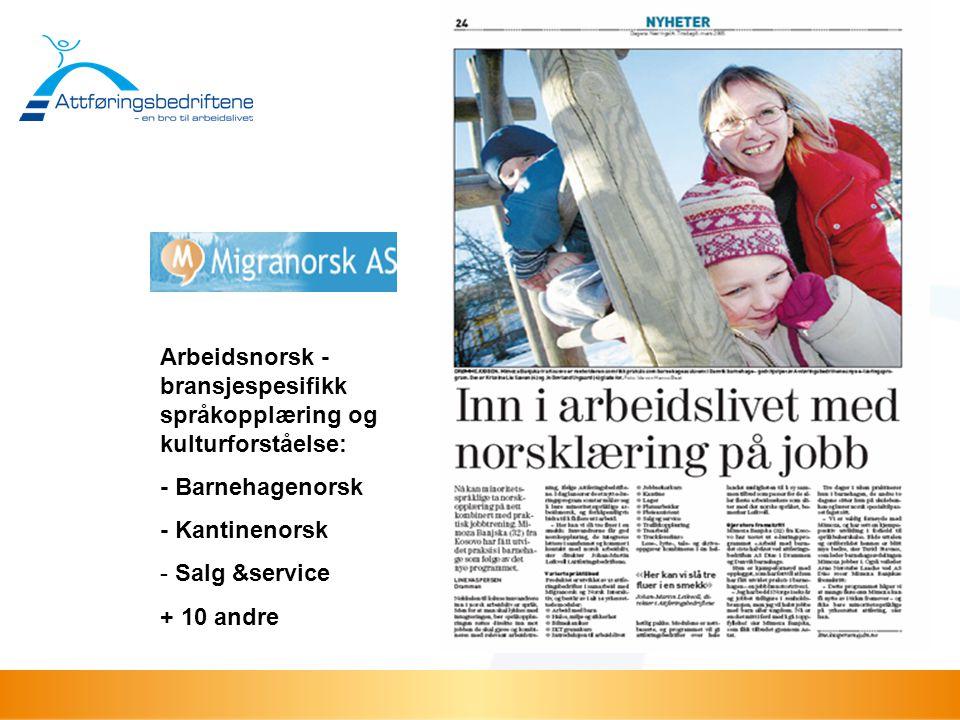 Arbeidsnorsk -bransjespesifikk språkopplæring og kulturforståelse:
