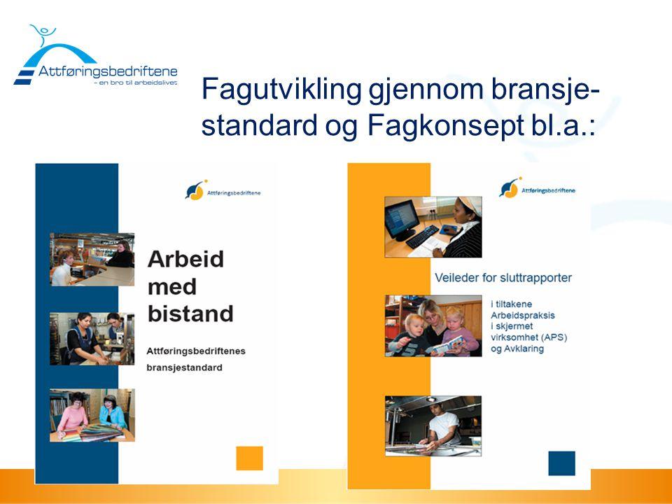 Fagutvikling gjennom bransje-standard og Fagkonsept bl.a.: