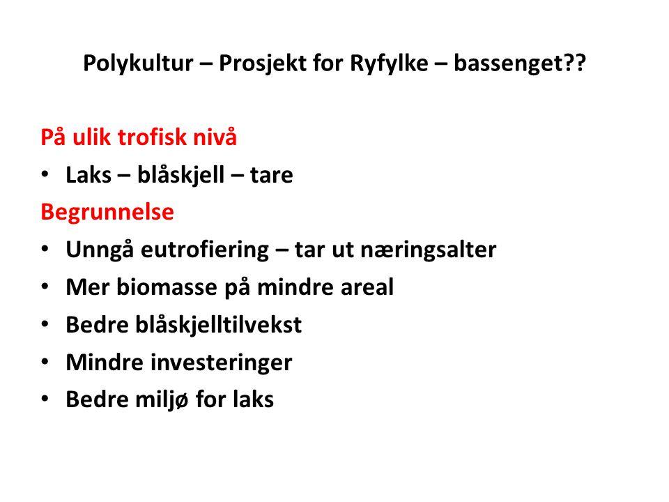 Polykultur – Prosjekt for Ryfylke – bassenget