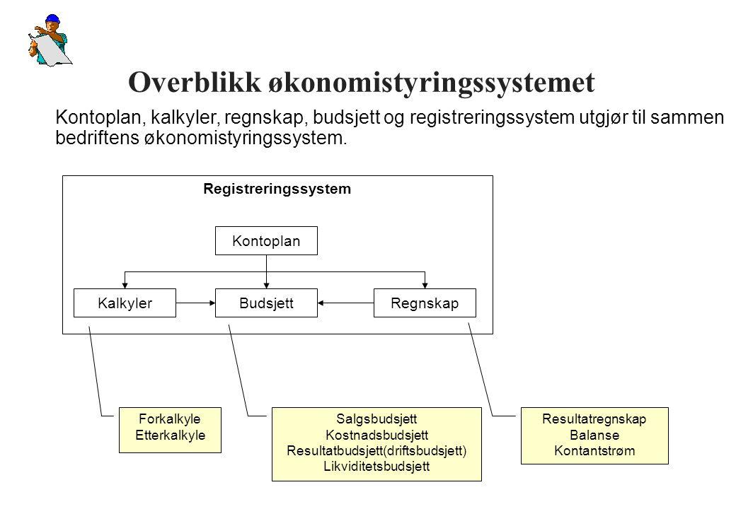 Overblikk økonomistyringssystemet