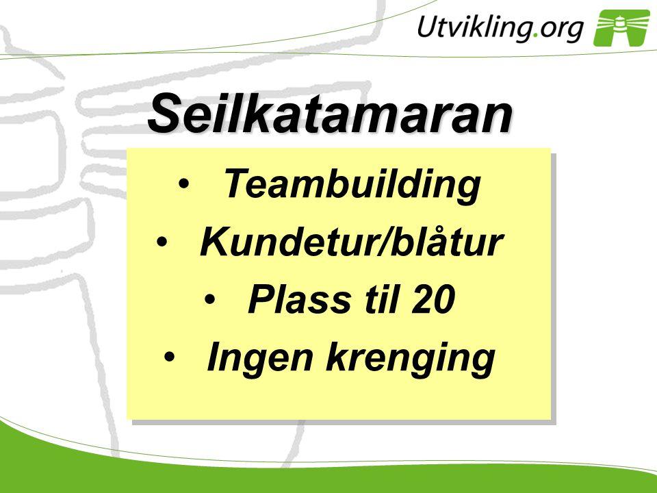 Seilkatamaran Teambuilding Kundetur/blåtur Plass til 20 Ingen krenging