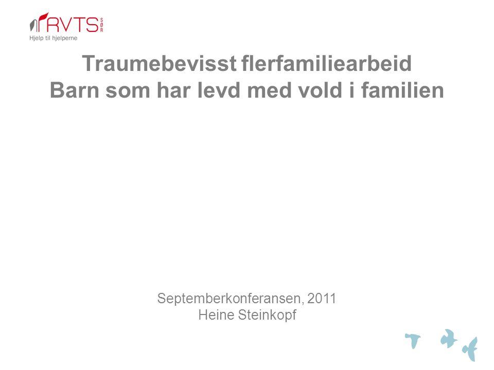 Traumebevisst flerfamiliearbeid Barn som har levd med vold i familien
