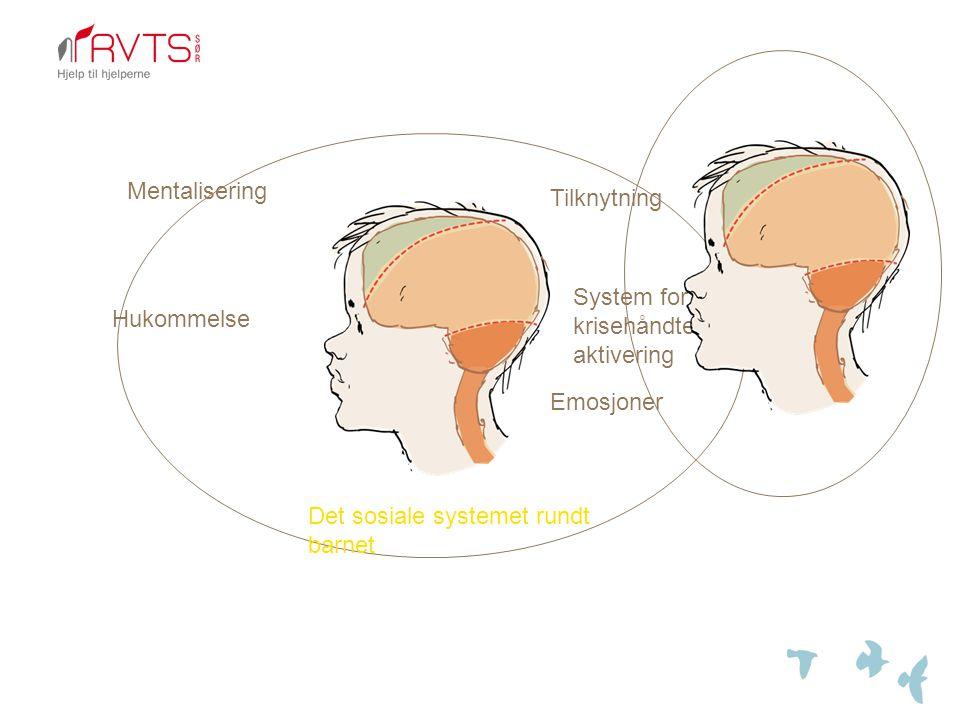 Mentalisering Tilknytning. System for krisehåndtering, aktivering.