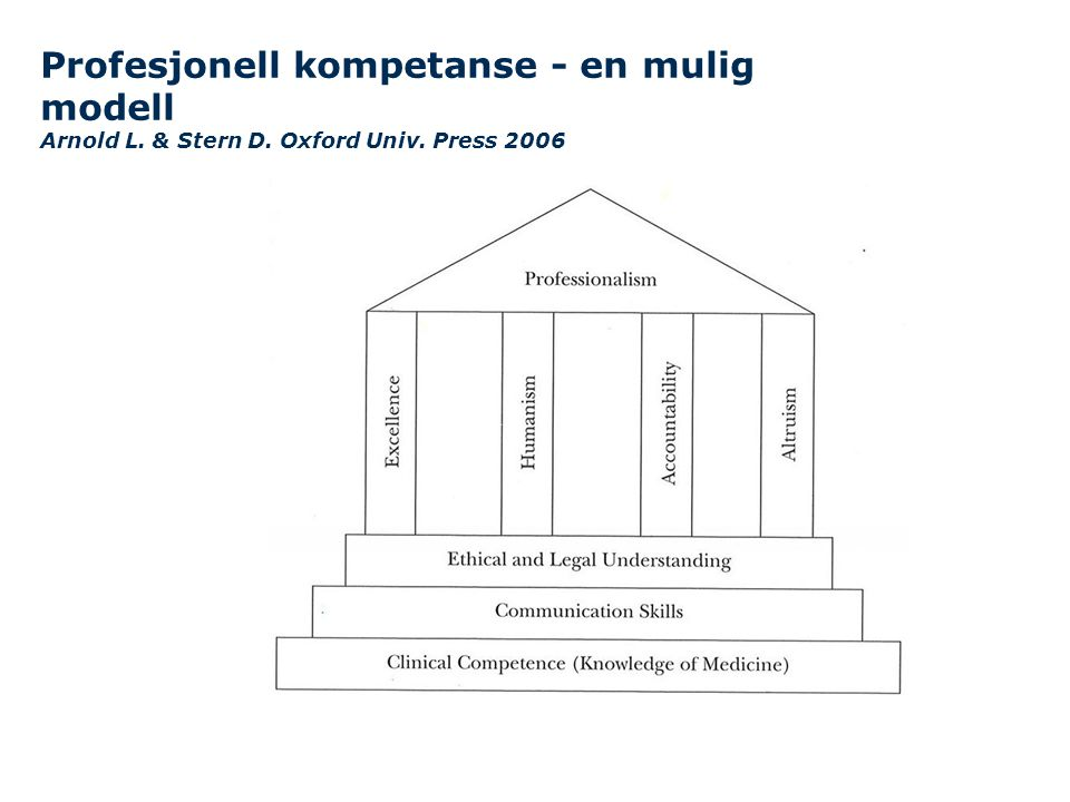 Profesjonell kompetanse - en mulig modell Arnold L. & Stern D
