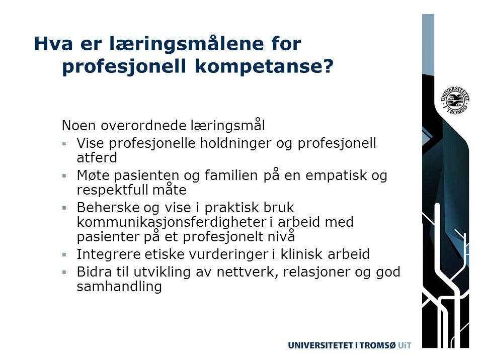 Hva er læringsmålene for profesjonell kompetanse