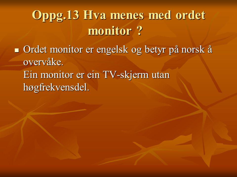 Oppg.13 Hva menes med ordet monitor