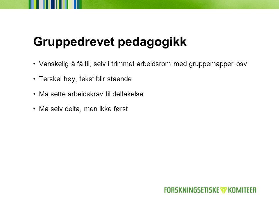 Gruppedrevet pedagogikk