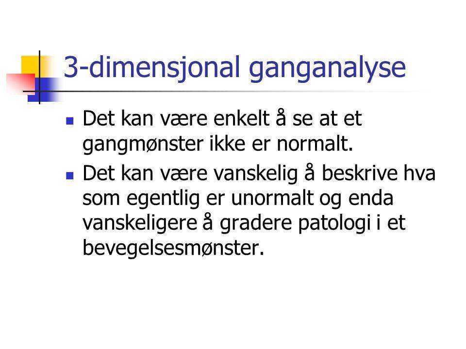 3-dimensjonal ganganalyse