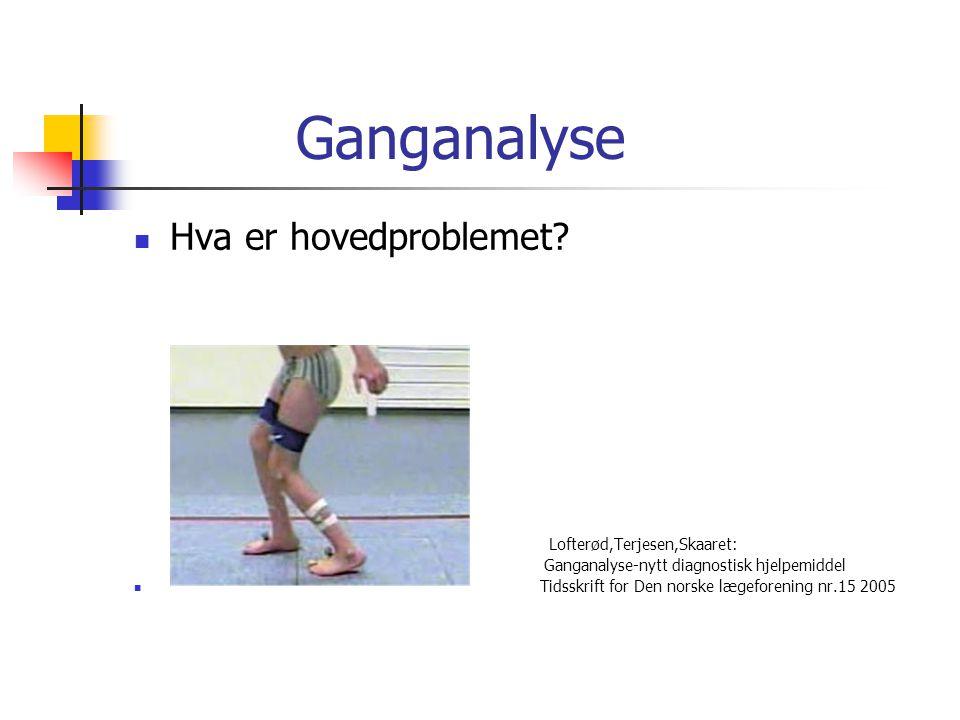 Ganganalyse Hva er hovedproblemet Lofterød,Terjesen,Skaaret: