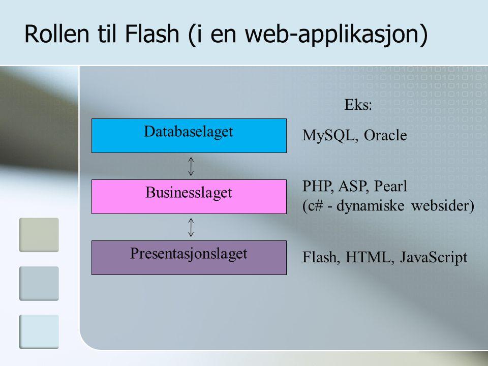 Rollen til Flash (i en web-applikasjon)