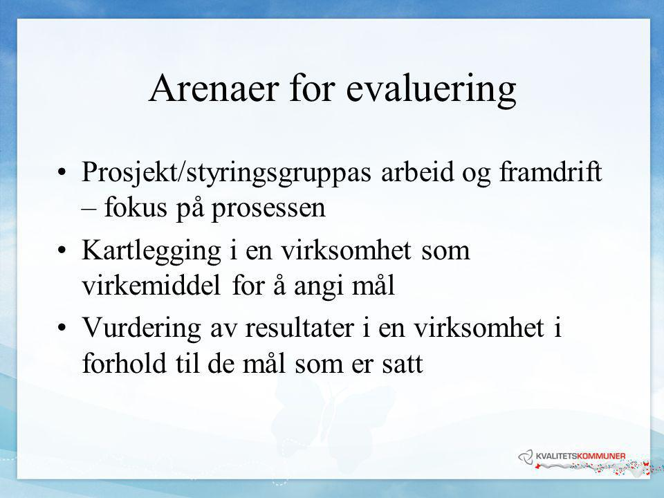 Arenaer for evaluering