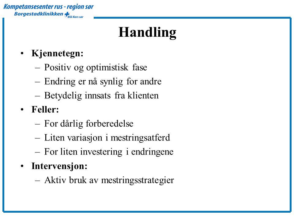 Handling Kjennetegn: Positiv og optimistisk fase