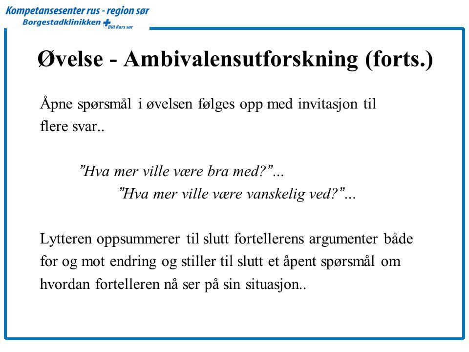Øvelse - Ambivalensutforskning (forts.)