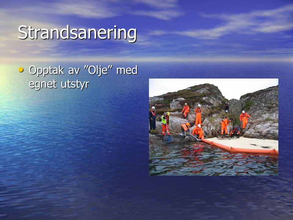 Strandsanering Opptak av Olje med egnet utstyr