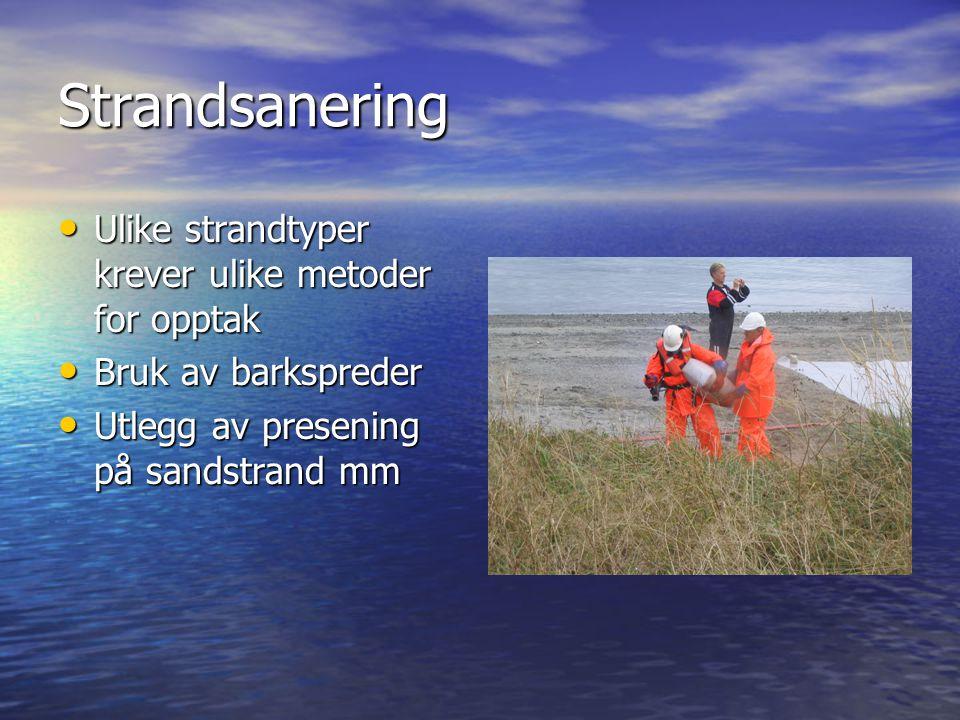Strandsanering Ulike strandtyper krever ulike metoder for opptak