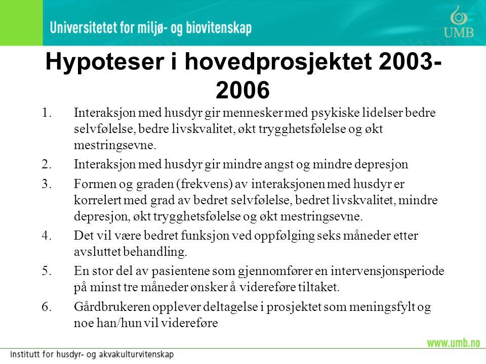 Hypoteser i hovedprosjektet 2003-2006