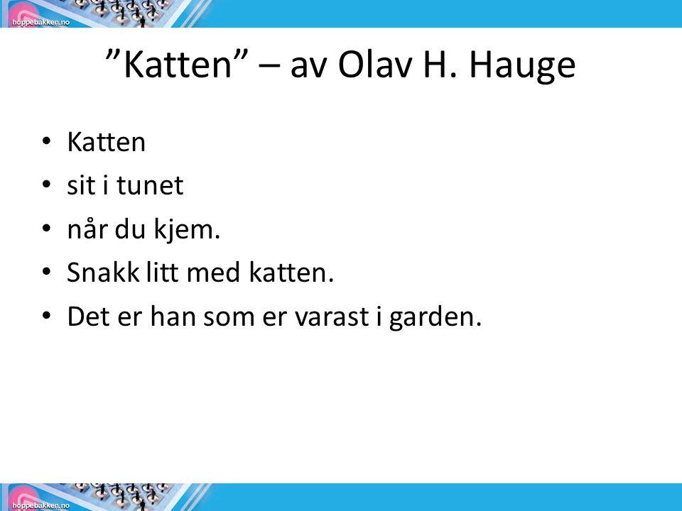 Katten – av Olav H. Hauge