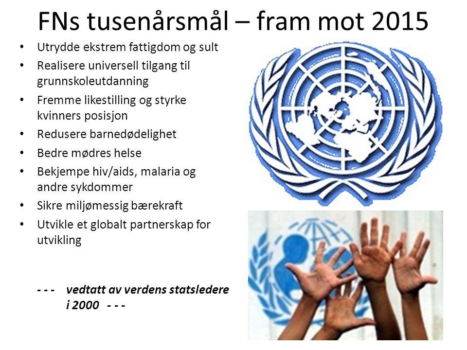 FNs tusenårsmål – fram mot 2015