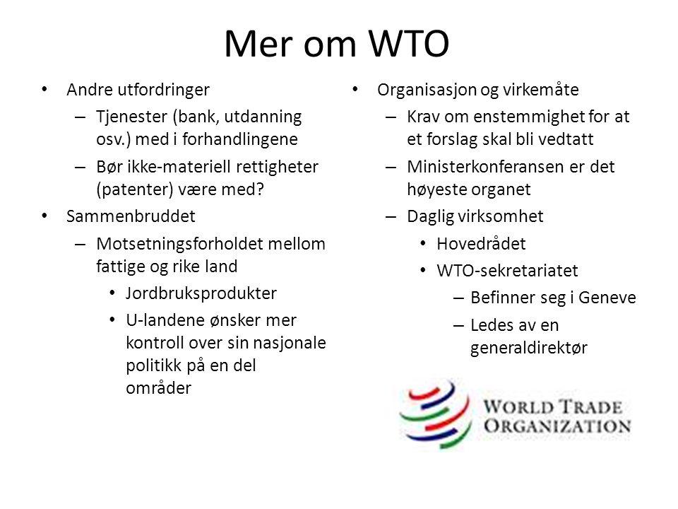 Mer om WTO Andre utfordringer