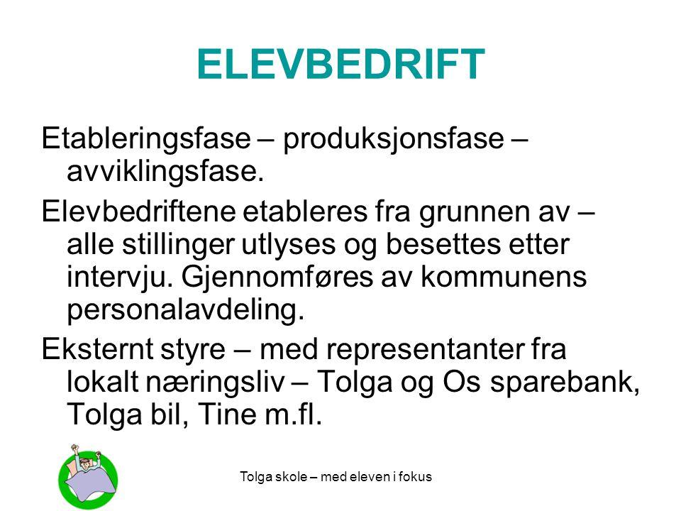 ELEVBEDRIFT Etableringsfase – produksjonsfase – avviklingsfase.