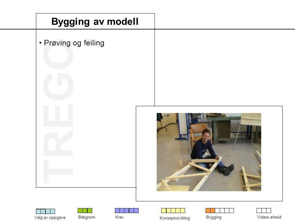 Bygging av modell Prøving og feiling