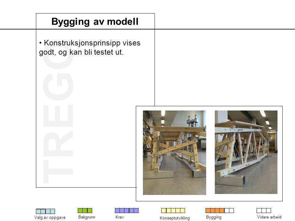 Konstruksjonsprinsipp vises godt, og kan bli testet ut.