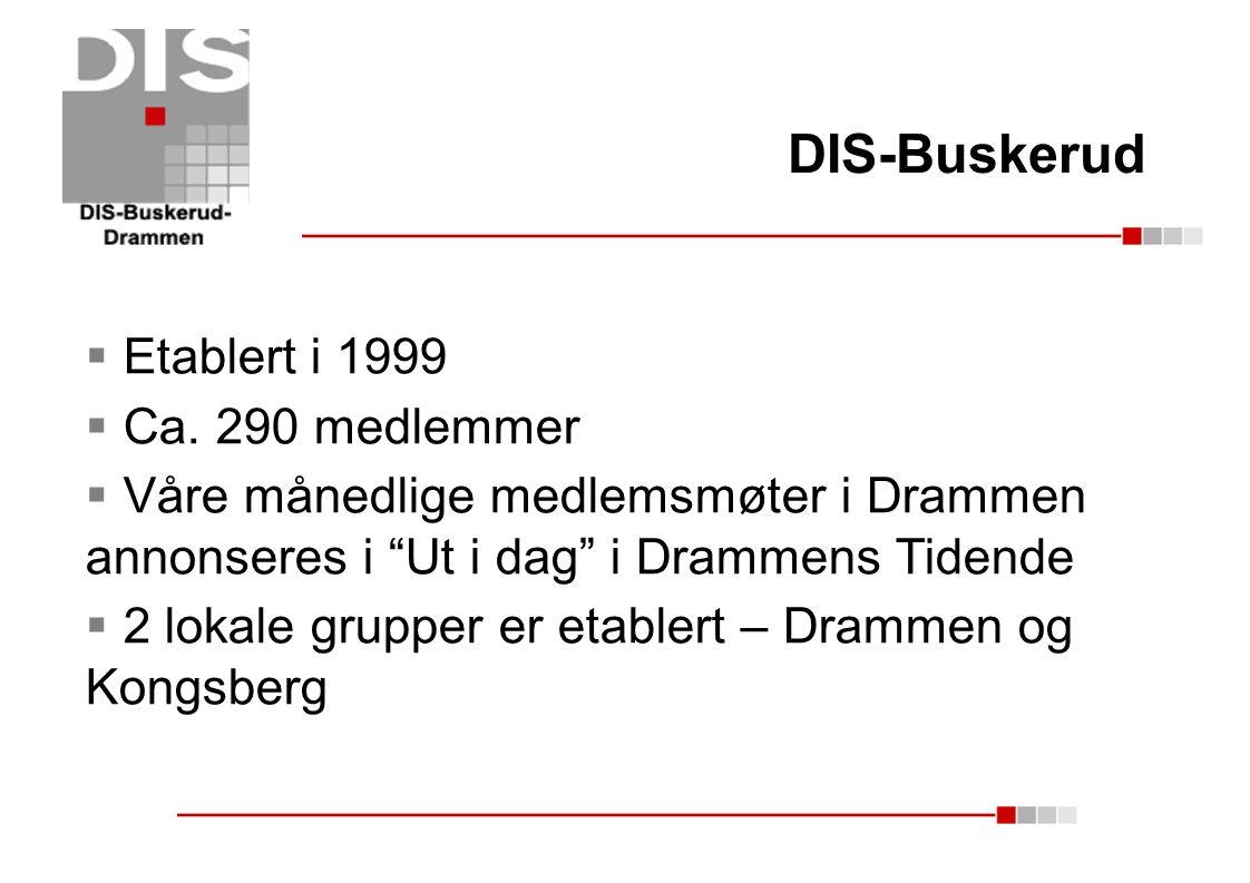 DIS-Buskerud Etablert i 1999 Ca. 290 medlemmer