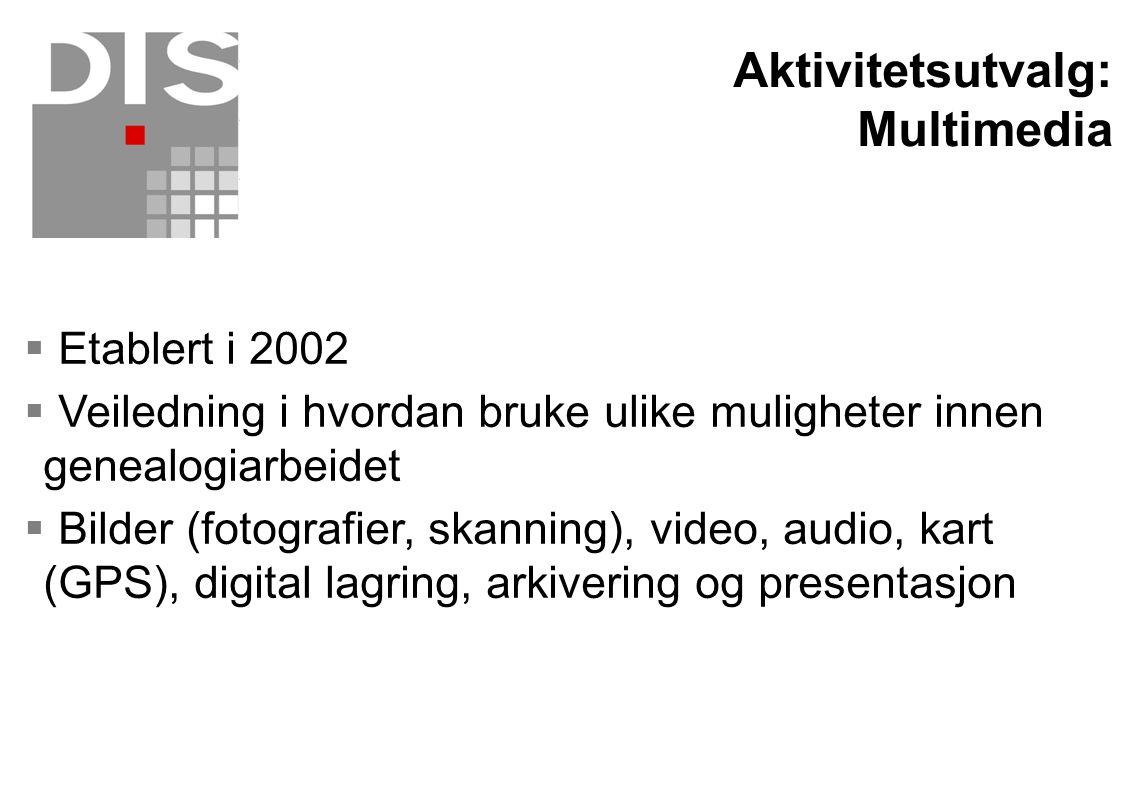 Aktivitetsutvalg: Multimedia