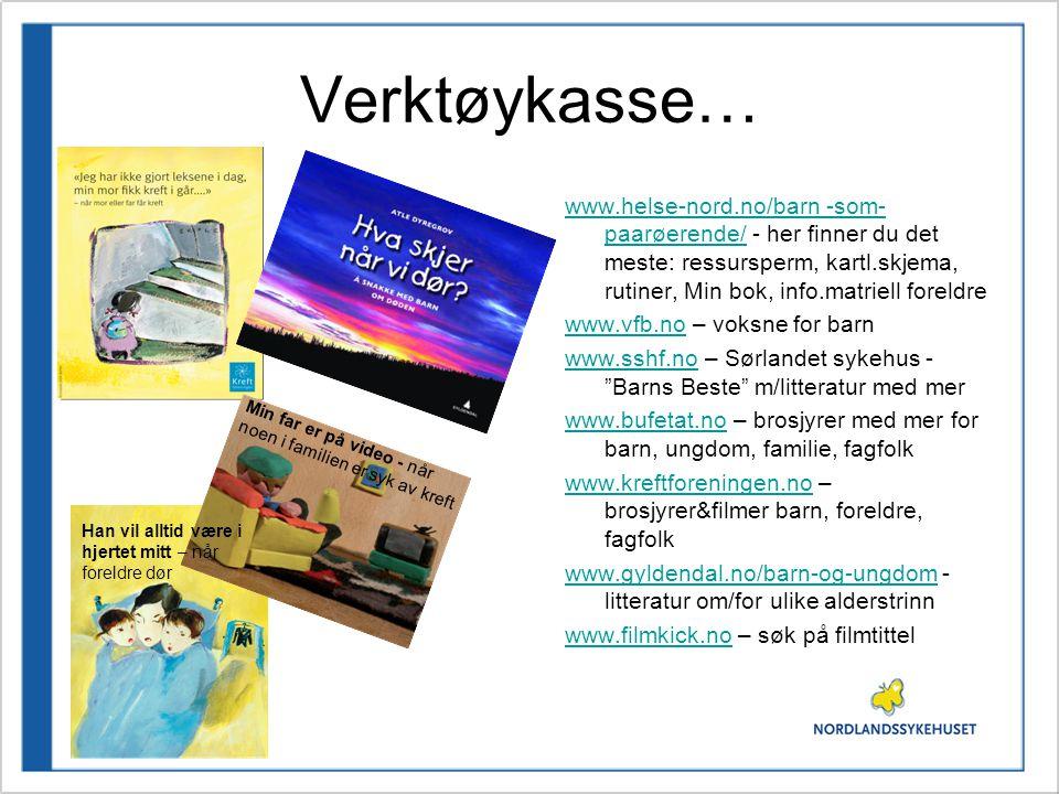 Verktøykasse… www.helse-nord.no/barn -som-paarøerende/ - her finner du det meste: ressursperm, kartl.skjema, rutiner, Min bok, info.matriell foreldre.