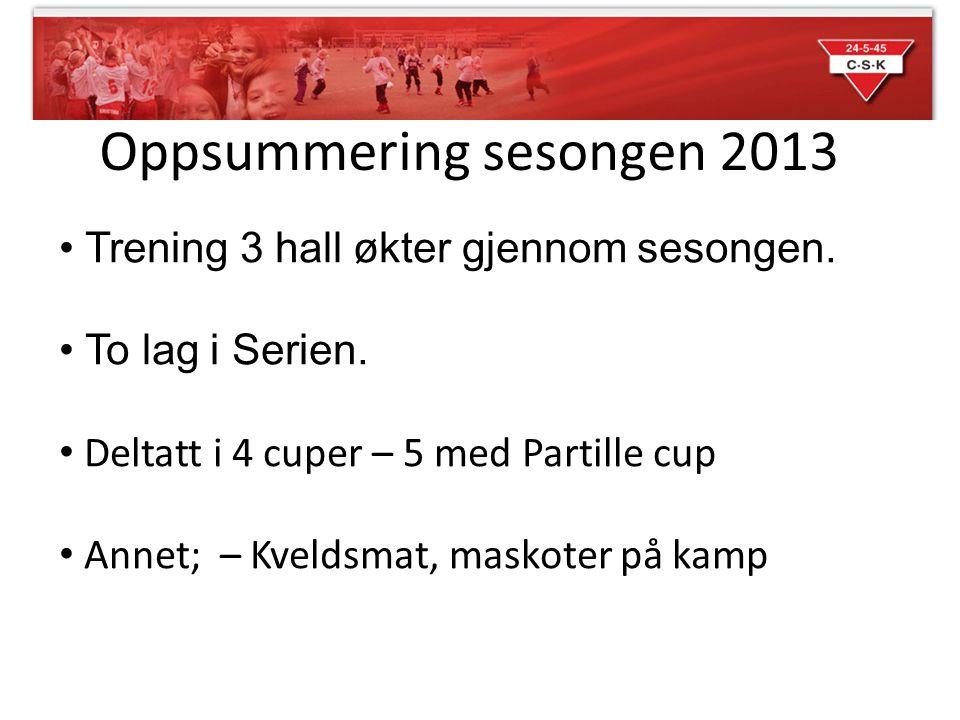 Oppsummering sesongen 2013