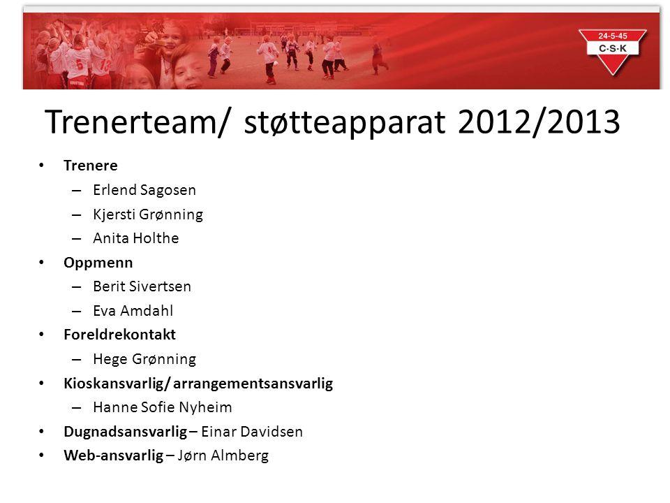 Trenerteam/ støtteapparat 2012/2013