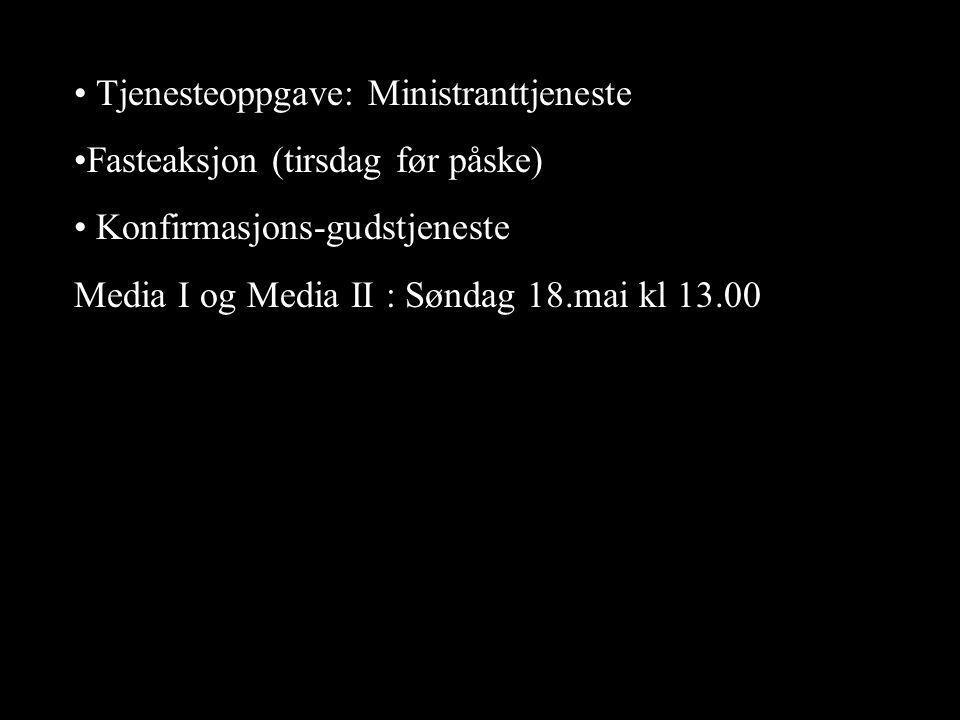 Tjenesteoppgave: Ministranttjeneste