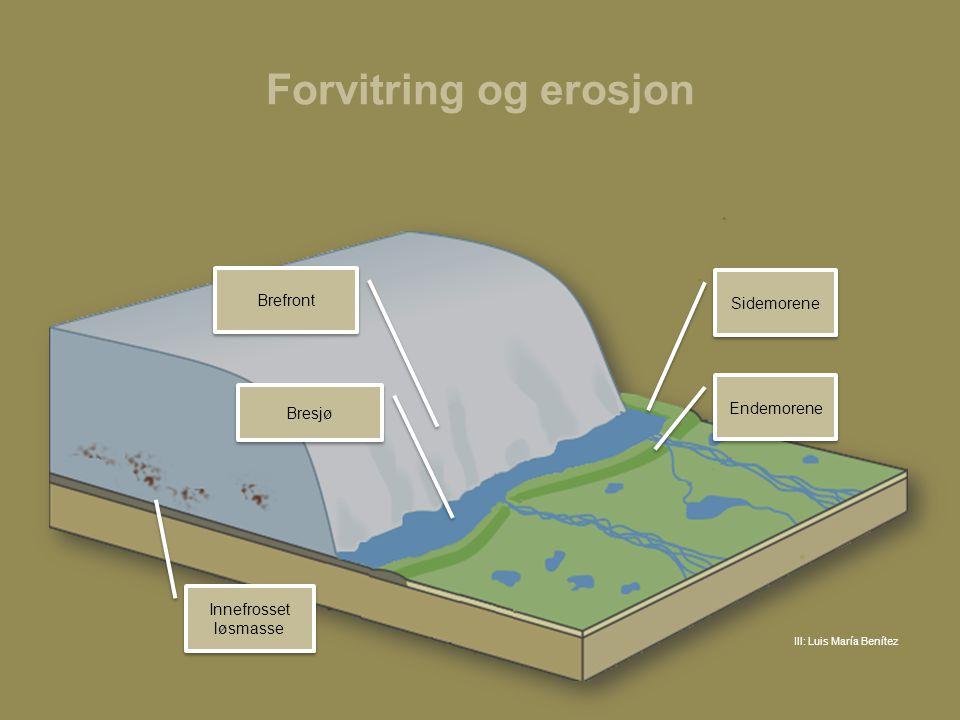 Forvitring og erosjon Brefront Sidemorene Endemorene Bresjø