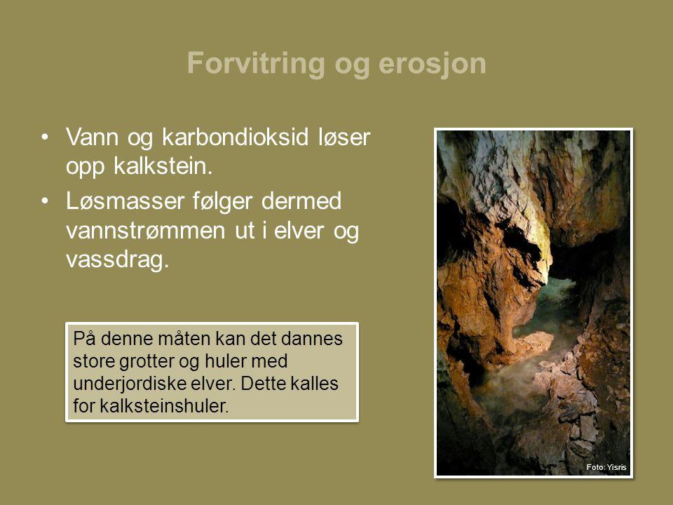 Forvitring og erosjon Vann og karbondioksid løser opp kalkstein.