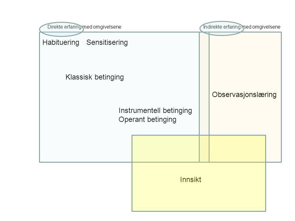 Instrumentell betinging Operant betinging