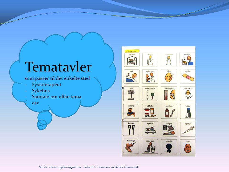 Tematavler som passer til det enkelte sted Fysioterapeut Sykehus