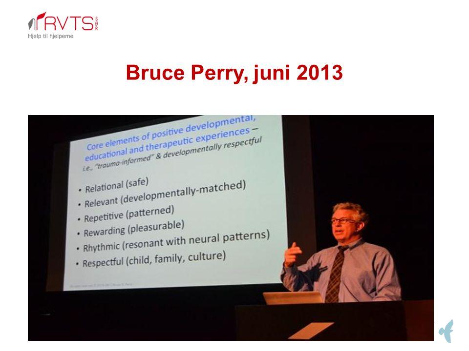 Bruce Perry, juni 2013 Mari