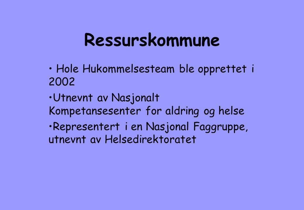 Ressurskommune Hole Hukommelsesteam ble opprettet i 2002