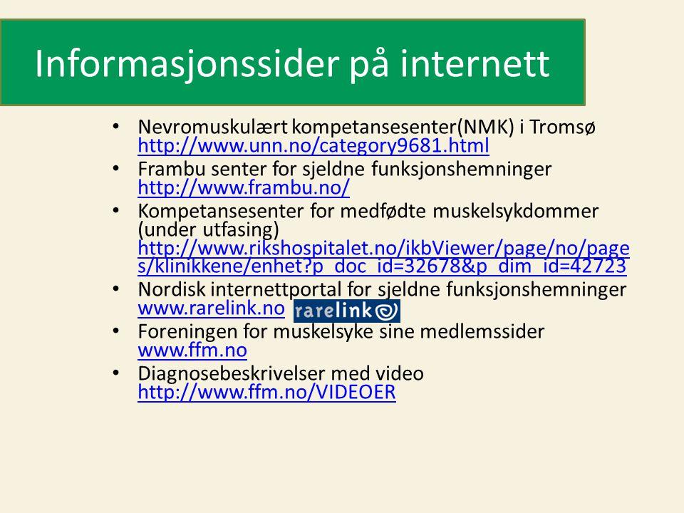Informasjonssider på internett