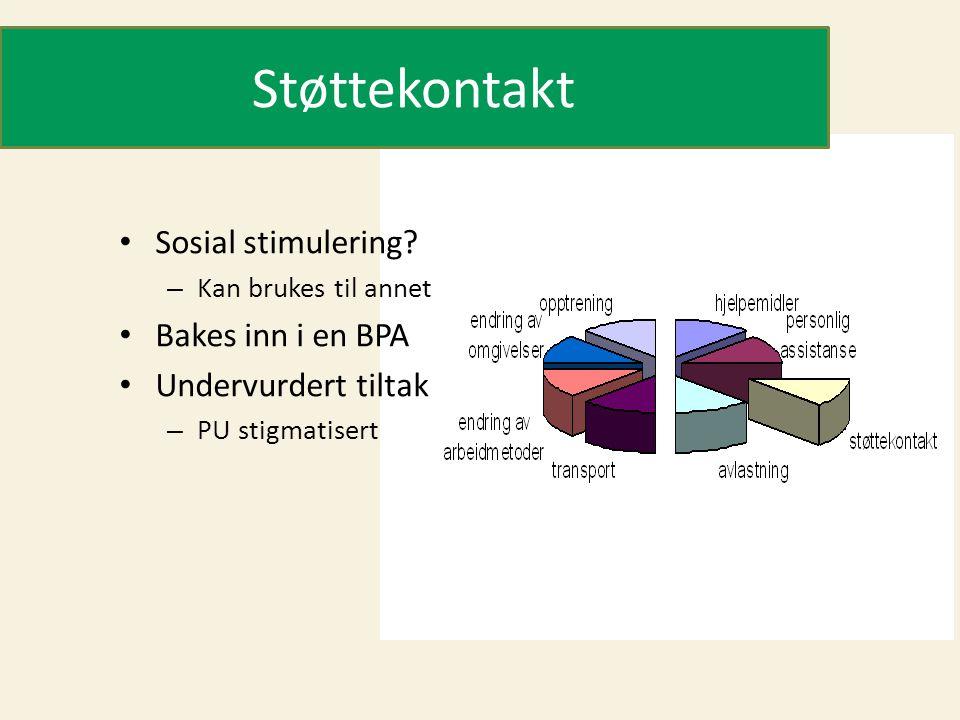Støttekontakt Sosial stimulering Bakes inn i en BPA