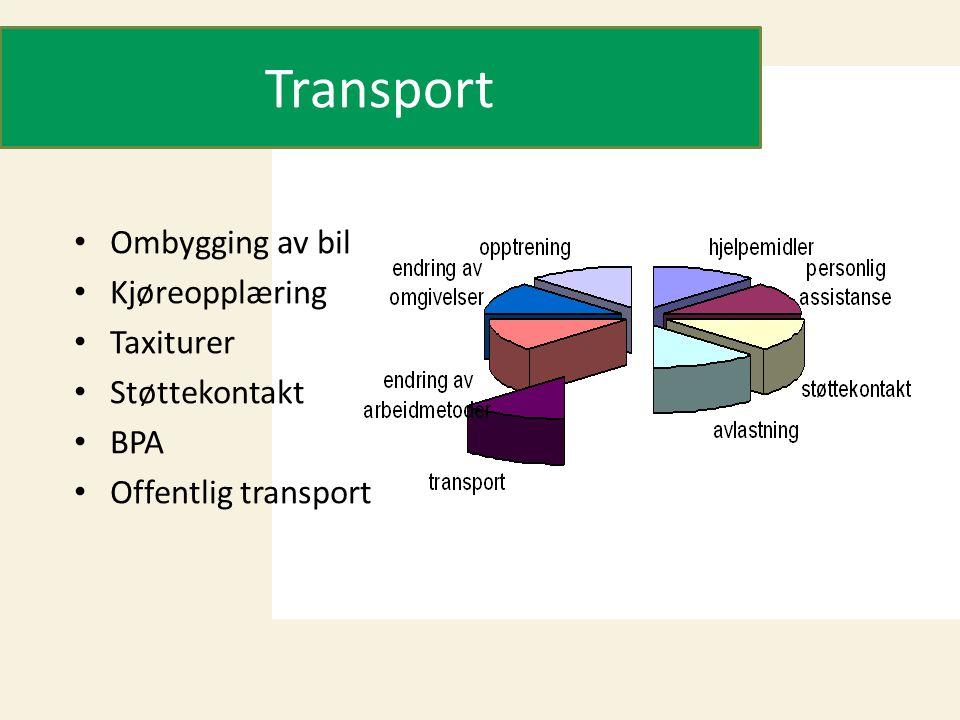 Transport Ombygging av bil Kjøreopplæring Taxiturer Støttekontakt BPA