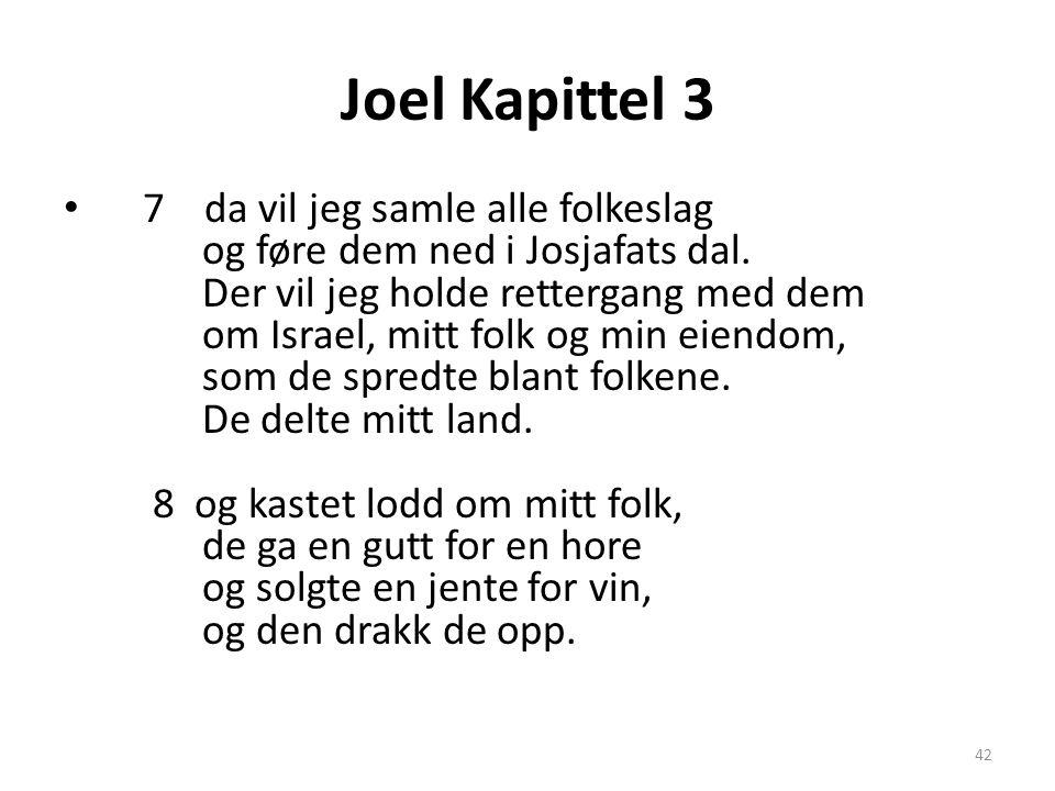 Joel Kapittel 3